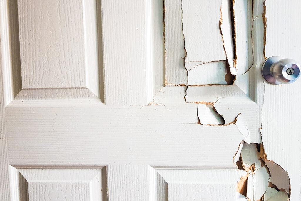 Choosing the Right Front Door